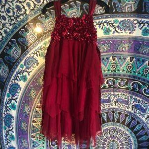 Biscotti Inc Girls Holiday Dress Size 12